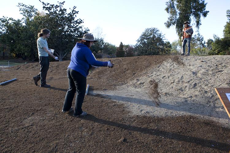 Volunteers seeding a wildflower garden for part of
