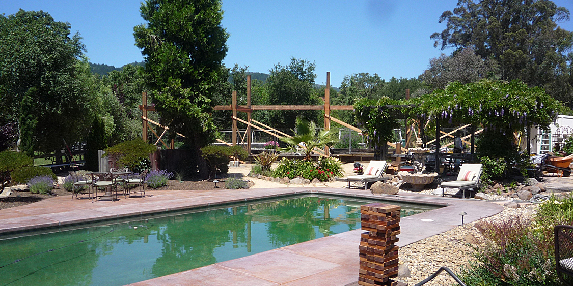 Arbor From House Accross Pool