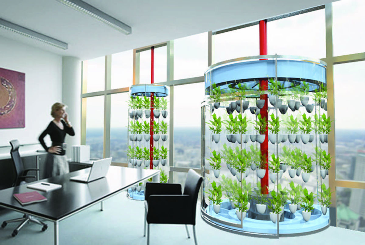 Office  Greenhouse Hybrid  Andrew Brooks  Archinect