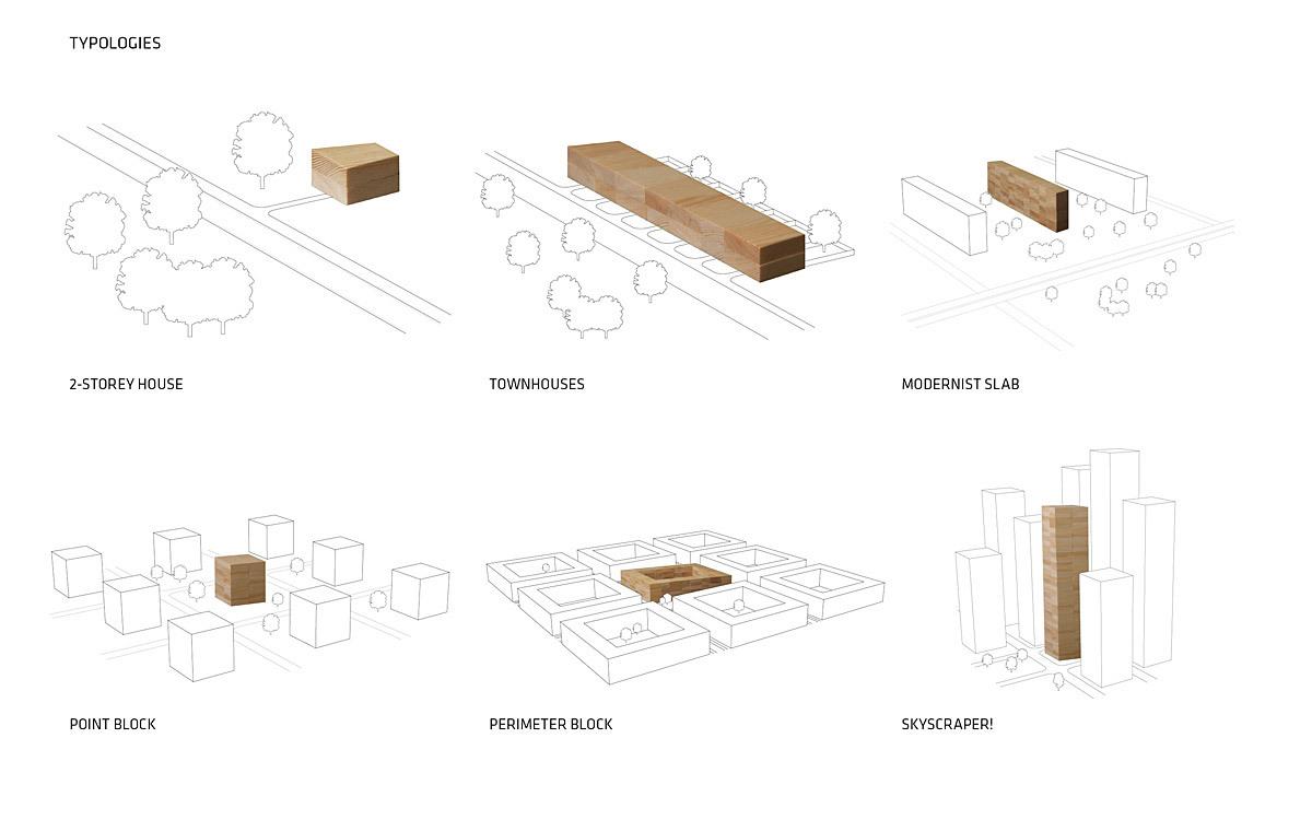 big wins the international e2  ecology   economy  timber