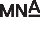 Michael Neumann Architecture (MNA)