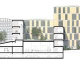 ZSW SECTION AA (Image: Henning Larsen Architects)