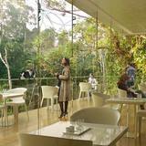 Restaurant Madagascar (Image: Artefactory for TN Plus & Beckmann N'Thépé)
