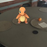 Charmander wanders to our meeting table.