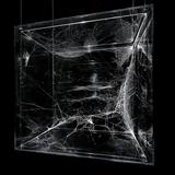 A web presented by Saraceno at a past exhibition at Tanya Bonakdar Gallery. Credit: Tanya Bonakdar Gallery