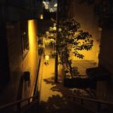 Han Ma: Chongqing Memory