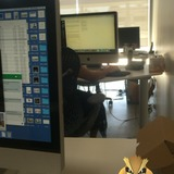 A pidgey sits on my desk.