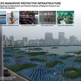 1st Next Generation Prize: Reinforced mangrove protective infrastructure, Miami, FL by Keith Joseph Van de Riet, Rensselaer Polytechnic Institute, Troy, NY: Reinforced Mangrove Protective Infrastructure: a strategy for integrating the regenerative and protective features of mangrove forests in...