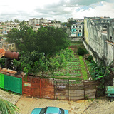 Photo 4: Havana's Gardens © Marcello Fantuz