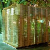 2nd Next Generation Prize: Temporary festival structure using recyclable building components, Providence, RI by David Jon Getty with Matthew Jacobs, Stephanie Gunawan, Rhode Island School of Design, Providence, RI: Shim Sukkah.