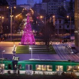 Hello Woods Christmas tree installation at the Palace of Arts in Budapest. Photo: Daniel Domolky