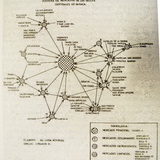 map of the organizational structure of the Oaxacan food distribution system. From the book, Mercados De Oaxaca, ˆD.R. Fundacion Cultura Anacrusa. 2004. Various contributors. via Chris DeHenzel