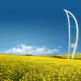 P113 AL_A Pylon Team: AL_A & Arup Plexus creates a poetic dialogue between structure and landscape. Its shape responds to changes in topography, striding across the horizon in sequence with a lightness and grace. Although seemingly filigree in nature, these pylons have been designed for...