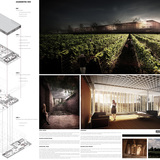 Results of the Wine Culture Centre Competition: FIRST PRIZE: TEAM V