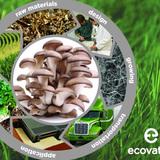 Ecovative promo composite