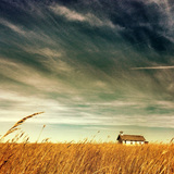 Future Voices: Heartland by Erik Johnson
