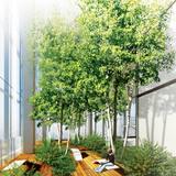 Interior view (Image: Murphy/Jahn Architects)