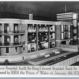 Model of hospital, 1933. Image: The Wellcome Library, via Death in Venice Kickstarter page.