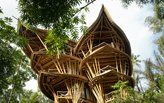 Bali's fascinating bamboo architecture