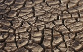 30% of the US in Drought