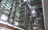 The Hanging Library of Mexico City