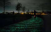 First glowing Van Gogh-Roosegaarde bicycle path in the world
