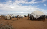 """Curator of MoMA's """"Insecurities: Tracing Displacement and Shelter"""" on palliative refugee architecture"""