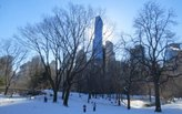 Too Late, Community Mobilizes to Save Central Park from Skyscraper Shadows