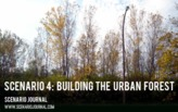 Scenario 4: Building the Urban Forest