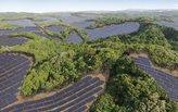 Turning Japan's golfing greens into solar farms