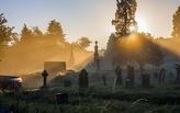 The New Urban Cemetery