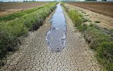 California Farmers Using Oil Wastewater during Drought