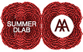 AA Summer DLAB 2015 :: RED
