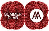 AA Summer DLAB 2015 :: RED