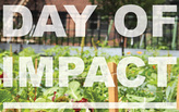 Day of Impact: Giving back through Architecture & Design