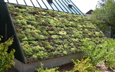 "France Mandates ""Green Roofs"" for all new buildings"