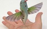 Hummingbird Drones and other Bio-inspired Robotics