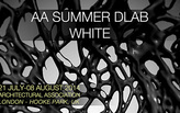 Apply now for the 2014 AA SUMMER DLAB :: WHITE - Registration ends Monday, July 14