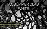 AA SUMMER DLAB :: WHITE