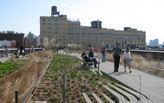 """Pratt Institute to offer masters in """"Placemaking and Management"""""""