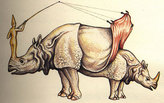 ARCHITECTS MAKING WEIRD STUFF: CODEX SERAPHINIANUS