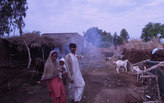 Relocation or Adaptation: Earth Home Project Brings Relief to Pakistanis Reeling from Floods