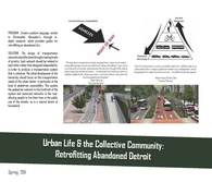 Urban Life & the Collective Community: Retrofitting Abandoned Detroit