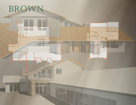 Brown project