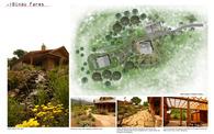 Bindu Farm
