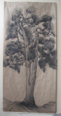 Drawing-Tree