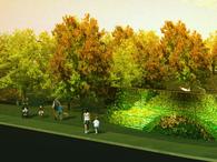 Arboreal Park