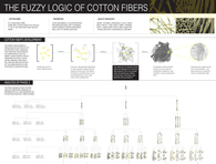 The Fuzzy Logic of Cotton Fibers