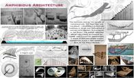 Amphibious Architecture