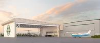 Arrivals Canopy / Convertible Hangar